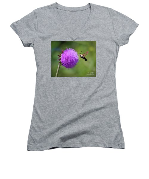Women's V-Neck T-Shirt featuring the photograph Amazing Insects - Hummingbird Moth by Kerri Farley
