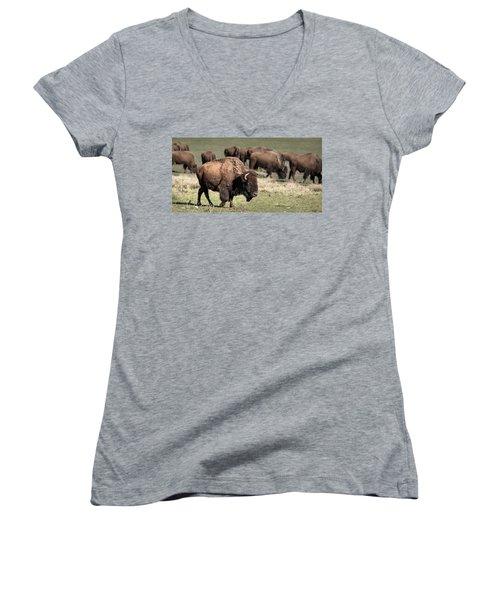 American Bison 5 Women's V-Neck