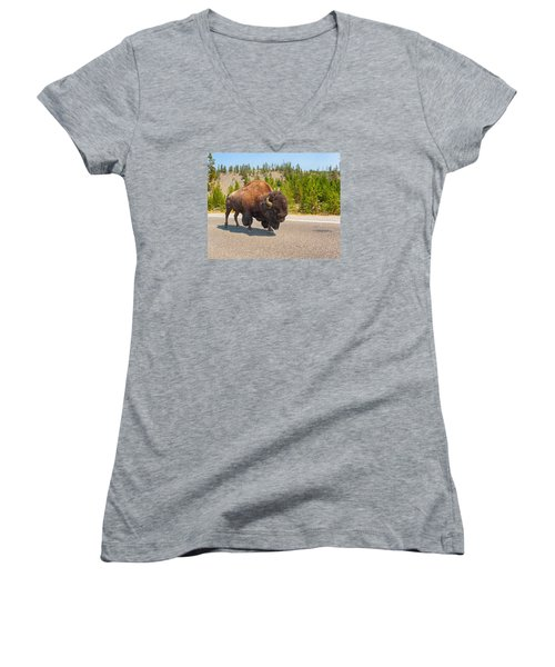 American Bison Sharing The Road In Yellowstone Women's V-Neck T-Shirt (Junior Cut) by John M Bailey