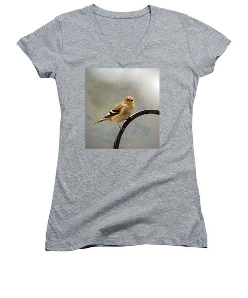 American Goldfinch Women's V-Neck T-Shirt