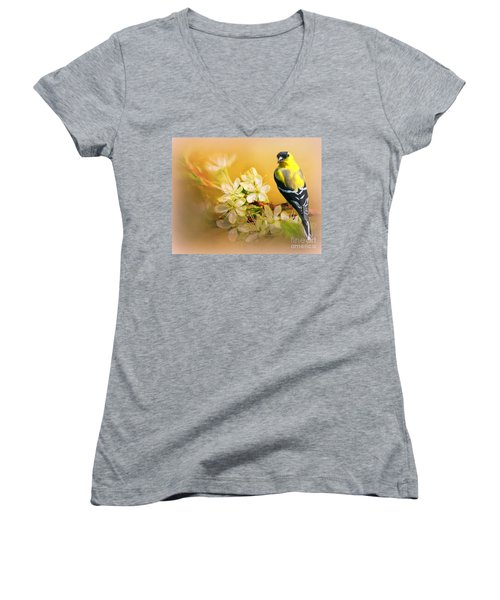 American Goldfinch In The Flowers Women's V-Neck T-Shirt