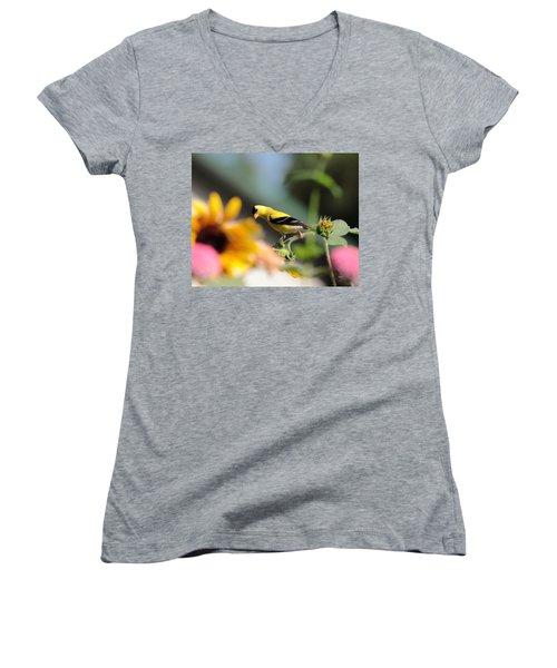 American Goldfinch Women's V-Neck