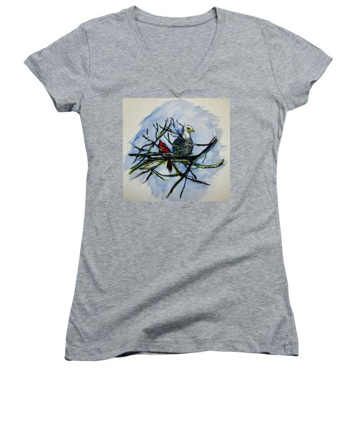 American Picture Women's V-Neck T-Shirt