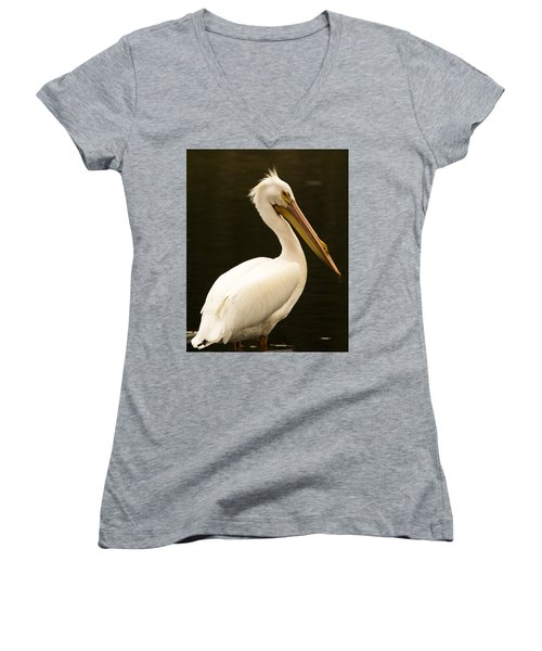American White Pelican Women's V-Neck (Athletic Fit)