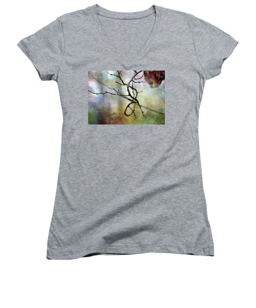 An Interesting Path 7923 Idp_2 Women's V-Neck (Athletic Fit)