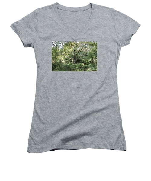 An Old One In The Forest Women's V-Neck