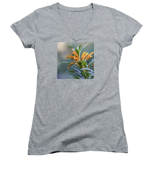 An Orange Flower Women's V-Neck