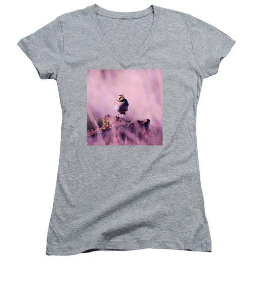 An Searching Gaze  Women's V-Neck T-Shirt