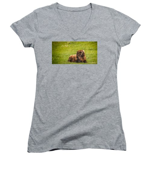 Women's V-Neck T-Shirt featuring the photograph Ancient Bison by Rikk Flohr