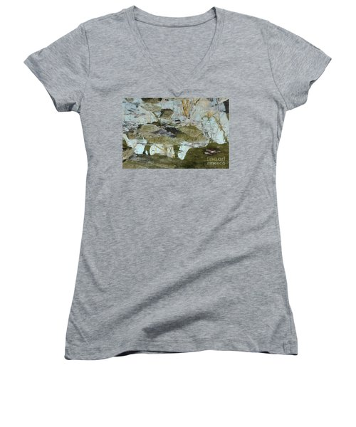 Angel Disguised As Coyote Women's V-Neck T-Shirt