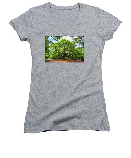 Angel Oak Tree In South Carolina  Women's V-Neck
