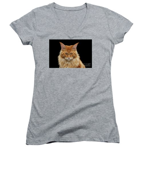 Angry Ginger Maine Coon Cat Gazing On Black Background Women's V-Neck T-Shirt (Junior Cut) by Sergey Taran