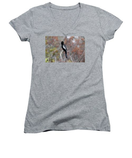 Women's V-Neck T-Shirt (Junior Cut) featuring the photograph Anhinga by Gary Wightman