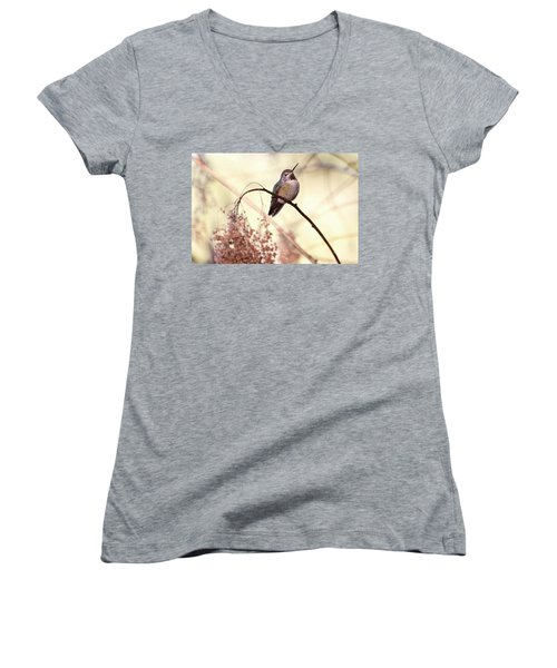 Anna's Hummingbird Closeup Women's V-Neck T-Shirt (Junior Cut) by Peggy Collins