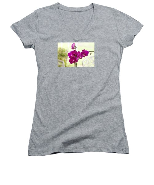Women's V-Neck T-Shirt (Junior Cut) featuring the photograph Anniversary Orchids by Joan Bertucci