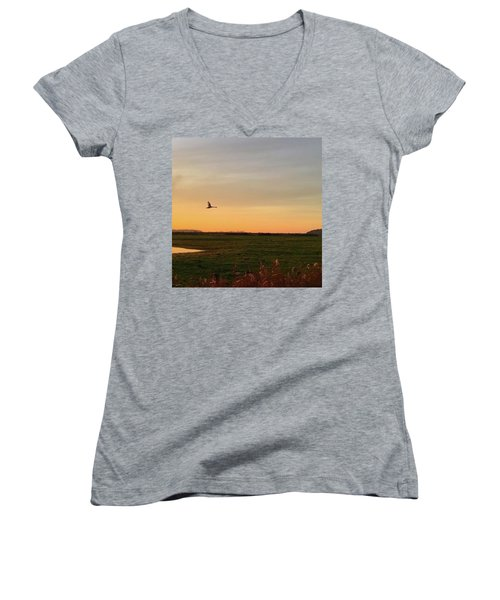 Another Iphone Shot Of The Swan Flying Women's V-Neck T-Shirt (Junior Cut) by John Edwards