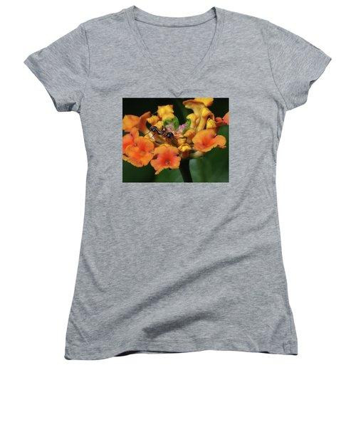 Ant On Plant  Women's V-Neck T-Shirt (Junior Cut) by Richard Rizzo