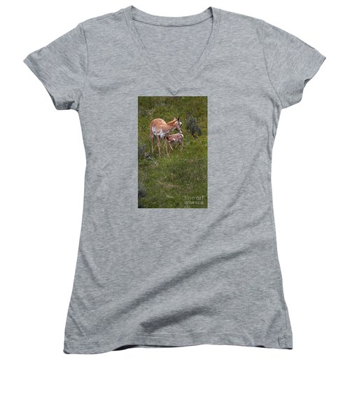 Antelope And Baby-signed-#3576 Women's V-Neck (Athletic Fit)
