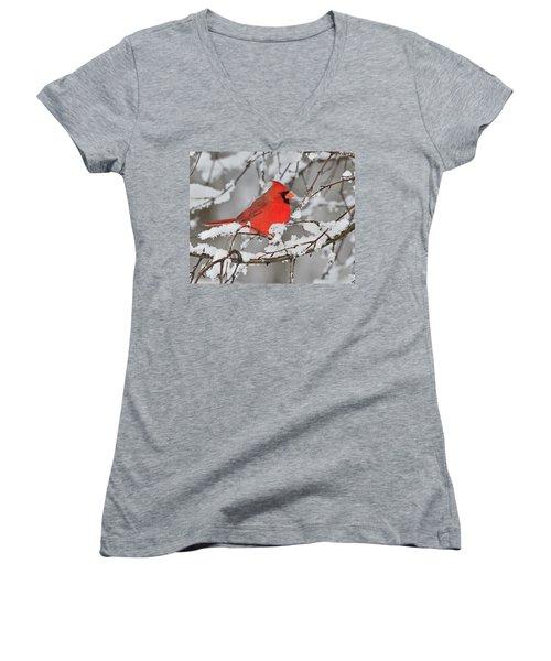 Anticipation Women's V-Neck T-Shirt (Junior Cut) by Tony Beck