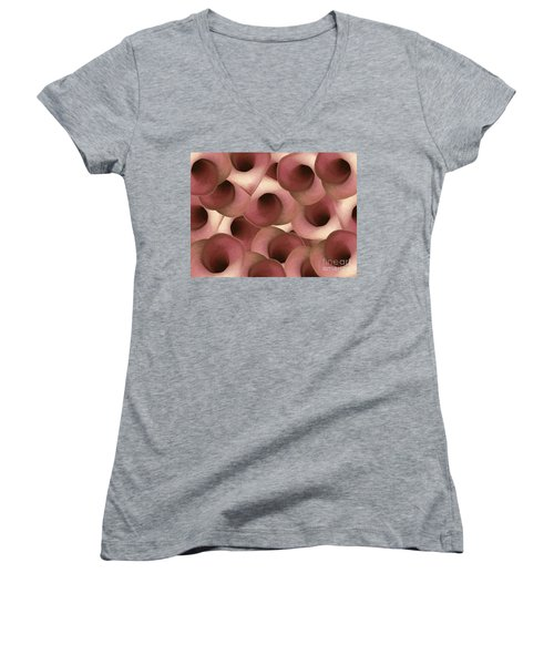 Apple Blossom Petals Women's V-Neck