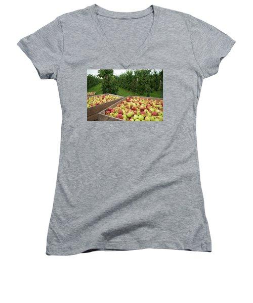 Apple Harvest Women's V-Neck T-Shirt