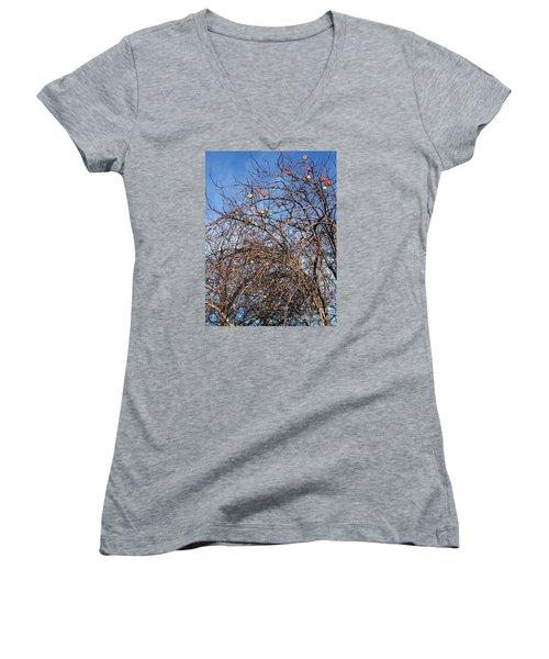 Apples In December Women's V-Neck T-Shirt (Junior Cut)