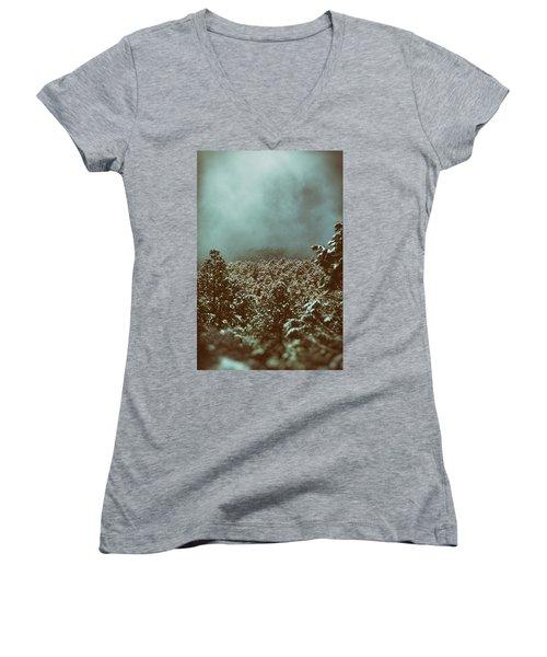 Approaching Storm Women's V-Neck T-Shirt (Junior Cut) by Jason Coward