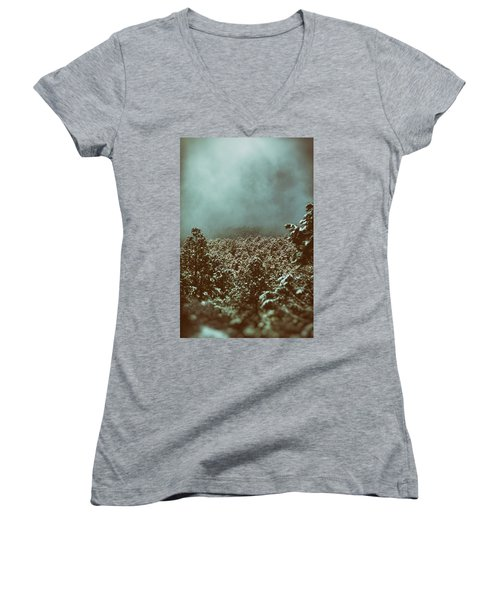 Approaching Storm Women's V-Neck (Athletic Fit)