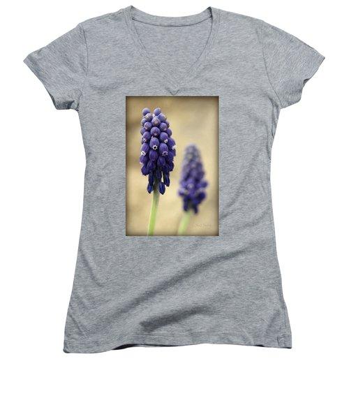 Women's V-Neck T-Shirt (Junior Cut) featuring the photograph April Indigo by Chris Berry
