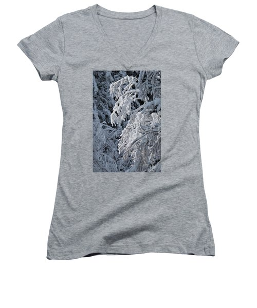 April Snow Women's V-Neck (Athletic Fit)