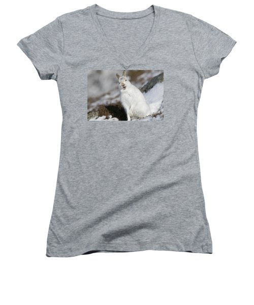 Are You Kidding? - Mountain Hare #14 Women's V-Neck (Athletic Fit)