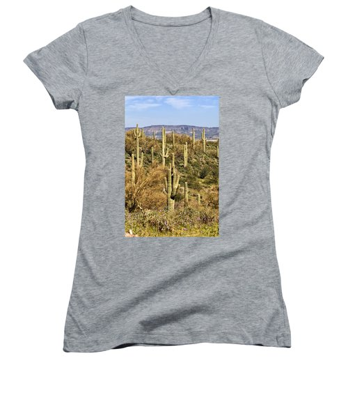 Arizona Desert Women's V-Neck