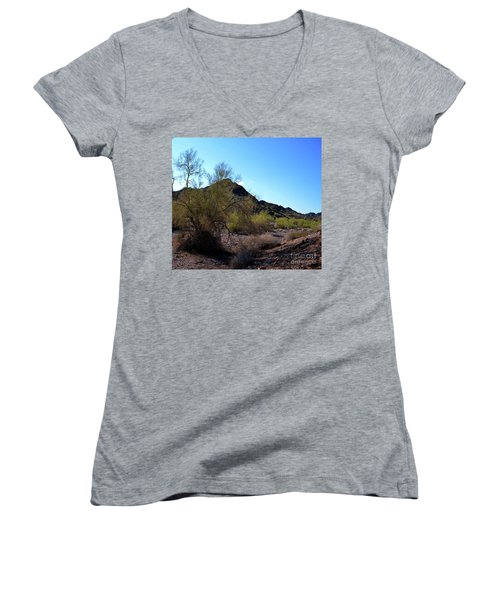 Arizona Desert Women's V-Neck T-Shirt (Junior Cut) by Renie Rutten