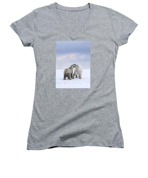Artic Antics Women's V-Neck T-Shirt (Junior Cut)