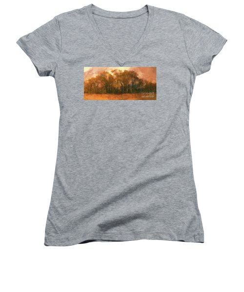 Artistic Fall Colors In The Blue Ridge Fx Women's V-Neck T-Shirt (Junior Cut) by Dan Carmichael