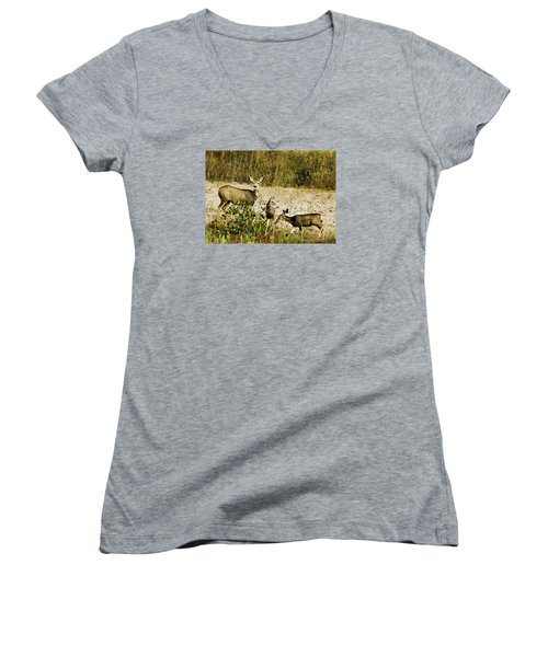 Mule Doe And Her Twins Women's V-Neck T-Shirt
