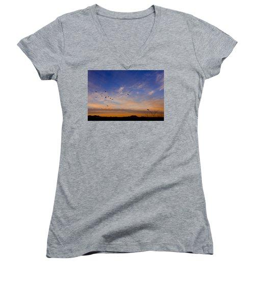 As Night Falls Women's V-Neck T-Shirt (Junior Cut) by Barbara Manis
