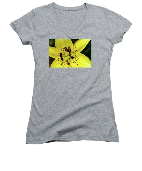 Asiatic Lily Women's V-Neck T-Shirt