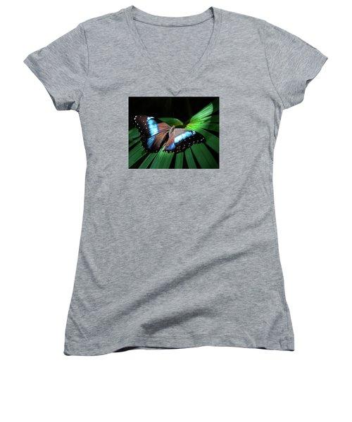 Asleep Beneath The Moon Women's V-Neck T-Shirt (Junior Cut) by Karen Wiles
