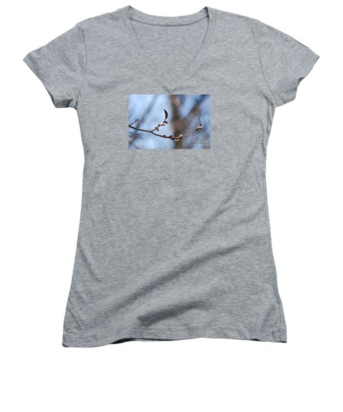 Women's V-Neck T-Shirt (Junior Cut) featuring the photograph Aspen Catkins 20120314_33a by Tina Hopkins