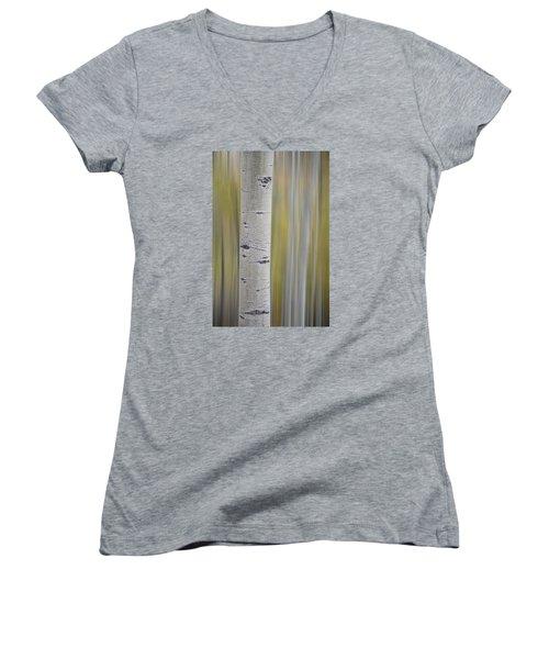 Aspen Women's V-Neck T-Shirt (Junior Cut) by Gary Lengyel