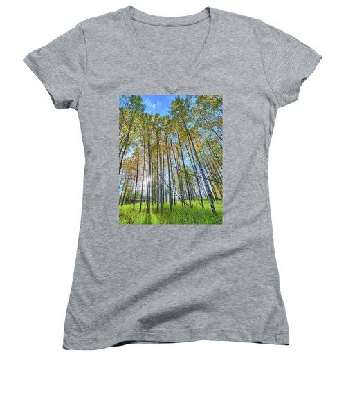 Aspen Grove Women's V-Neck