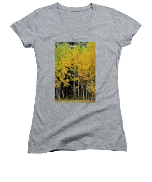 Women's V-Neck featuring the photograph Aspen Haven  by Ron Cline