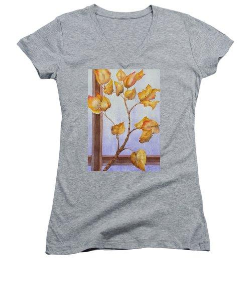 Aspen  Women's V-Neck T-Shirt