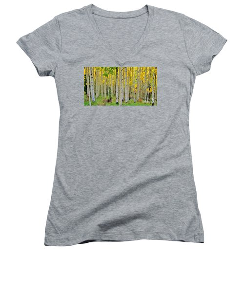 Aspen Slope Women's V-Neck T-Shirt (Junior Cut) by Ellen Heaverlo
