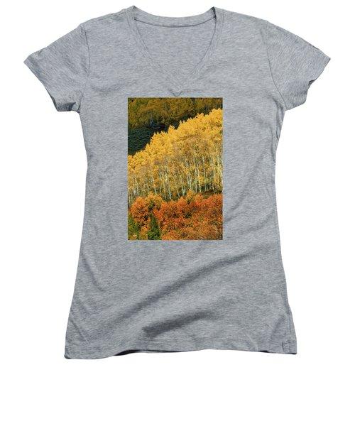 Aspen Waves Women's V-Neck T-Shirt (Junior Cut) by Dana Sohr