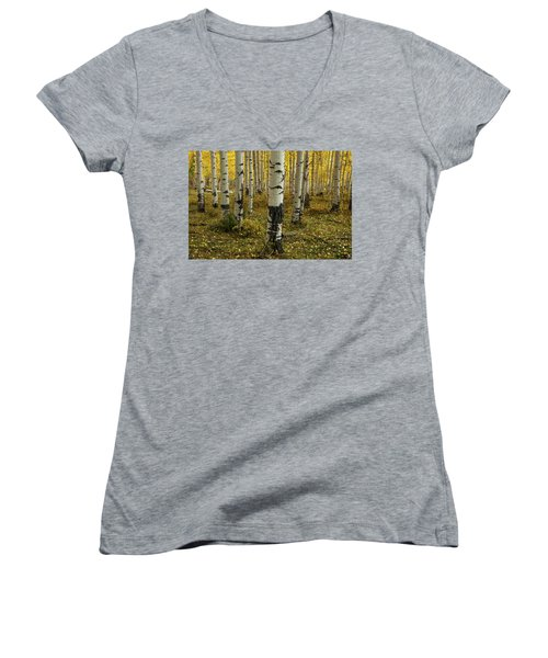 Aspens - 0245 Women's V-Neck T-Shirt