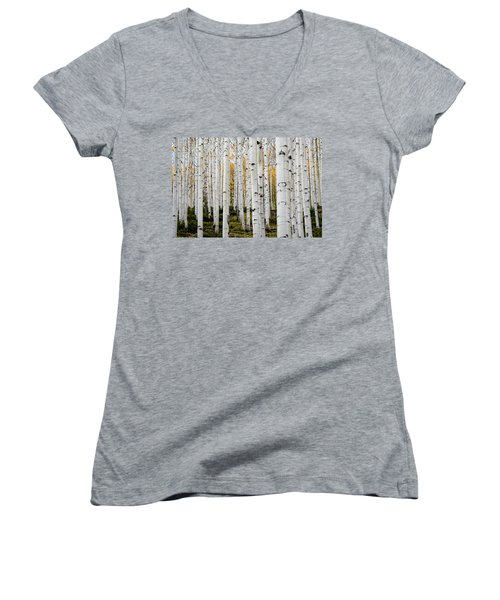 Aspens And Gold Women's V-Neck (Athletic Fit)