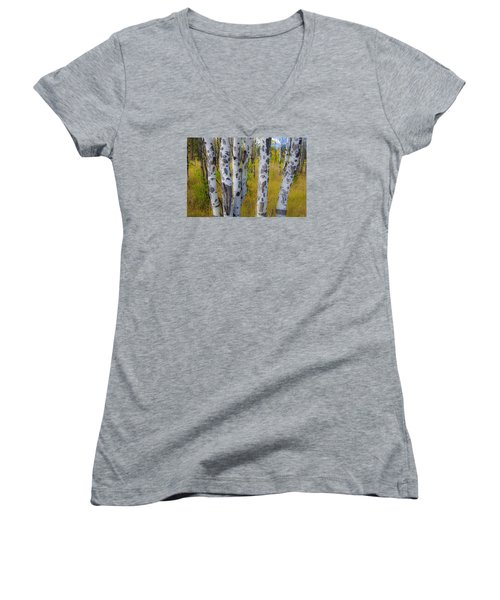 Aspens Women's V-Neck