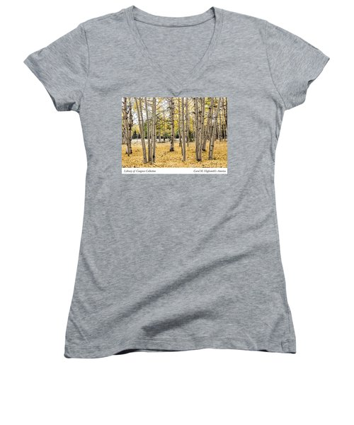 Aspens In Conejos County In Colorado, Near The New Mexico Border Women's V-Neck T-Shirt (Junior Cut) by Carol M Highsmith